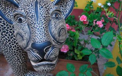 Project: Mexico SECTUR Adventure Travel Development